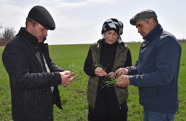 Бригадир Мудалиф НАУРУЗОВ (слева), председатель СХА «Кубань» Марина БОРЛАКОВА, агроном Мудалиф ГОГУЕВ